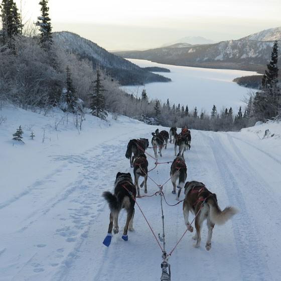 La Yukon Quest