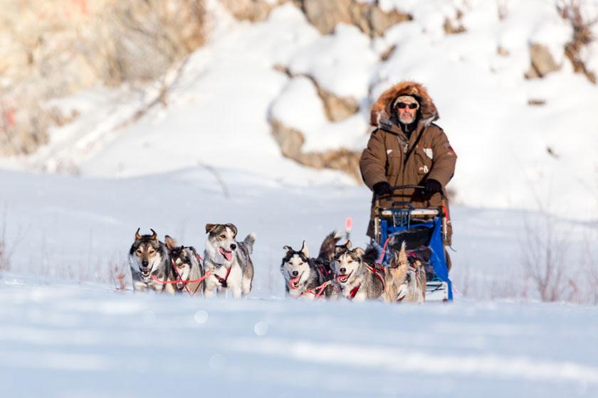 grande course avec mes chiens la