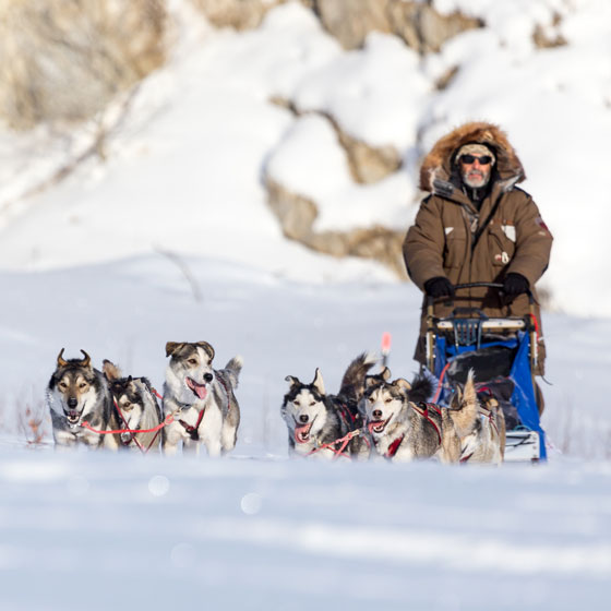 La Yukon Quest, l'album