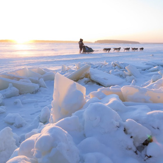 Odyssee-Sauvage-11-Semaine-du-13-janvier-2014-Fleuve-Amour-NVanier-TAIGA