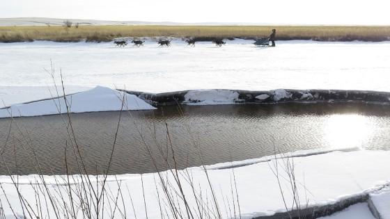 Odyssee-Sauvage-20-Semaine-du-3-fevrier-2014-Grands-espaces-NVanier-TAIGA
