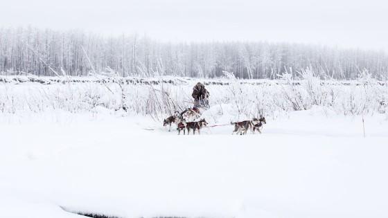 Yukon-Quest-11-depart-Circle-17-fevrier-2015-Julien-Schroeder