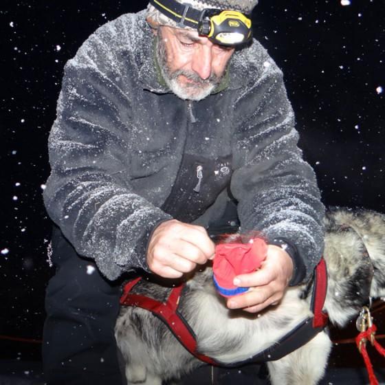 Yukon-Quest-14-depart-Circle-17-fevrier-2015-NVanier-TAIGA