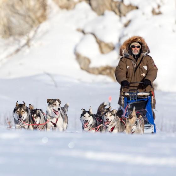 L'Iditarod