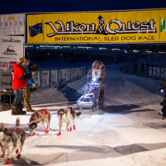 Yukon-Quest-4-arrivee-Fairbanks-19-fevrier-2015-Julien-Schroeder