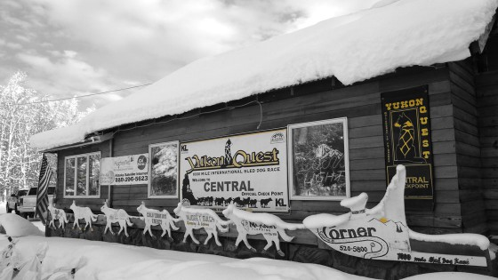 Yukon-Quest-7-Central-17-fevrier-2015-NVanier-TAIGA