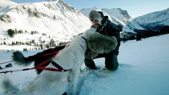 chiens10-Attelage-Odyssee-siberienne-Alvaro-Canovas