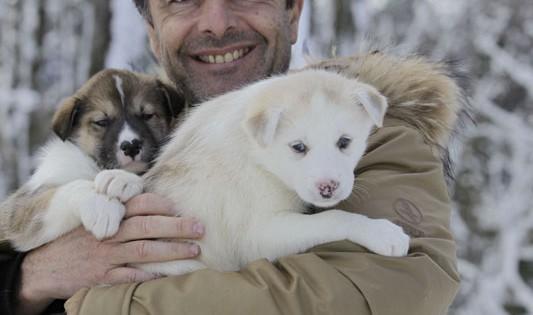 coeur-4-Les-chiens-au-Camp-PBlin